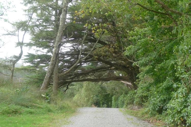 IrelandnLondon 338
