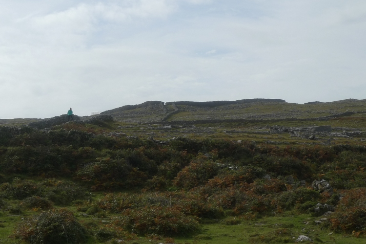 IrelandnLondon 370