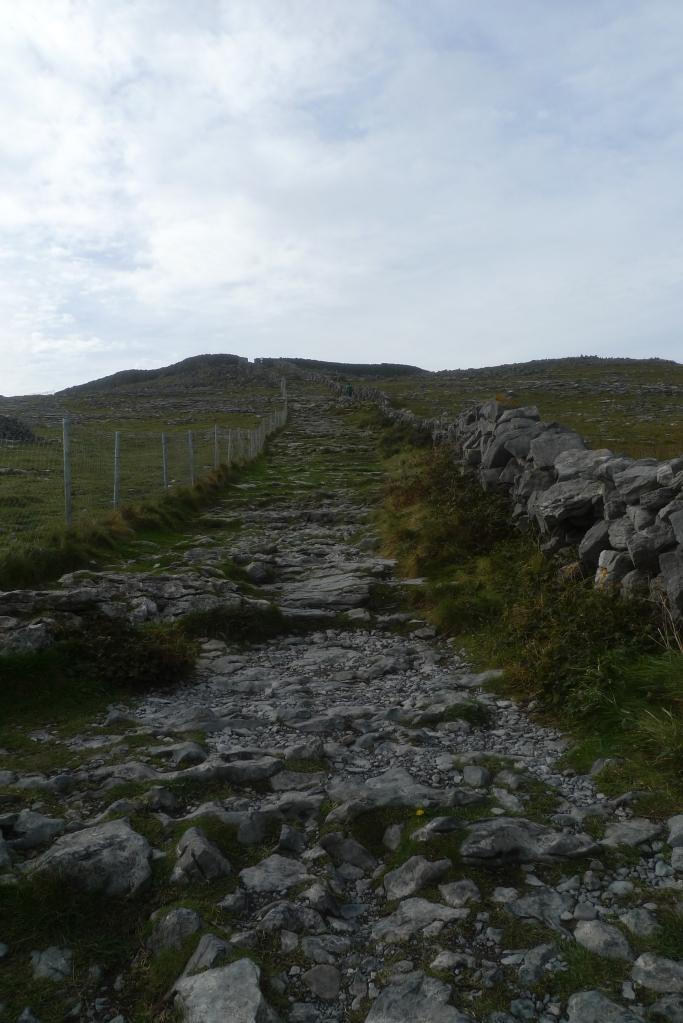 IrelandnLondon 377